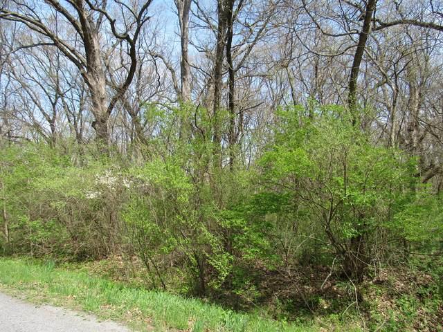0000 Irish Lane, Custer Park, IL 60481 (MLS #11058765) :: Carolyn and Hillary Homes