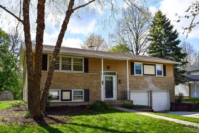 20 S Winston Drive, Palatine, IL 60074 (MLS #11058939) :: BN Homes Group