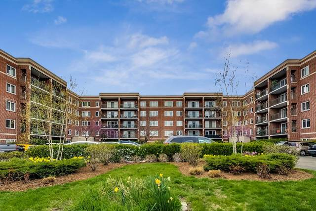5340 N Lowell Avenue #305, Chicago, IL 60630 (MLS #11059072) :: Helen Oliveri Real Estate