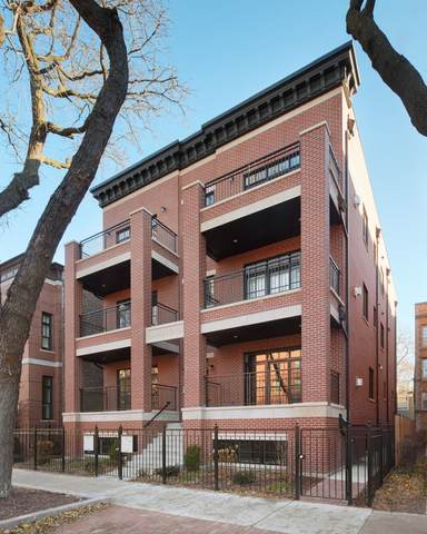 1900 N Sheffield Avenue 3N, Chicago, IL 60614 (MLS #11059103) :: Touchstone Group