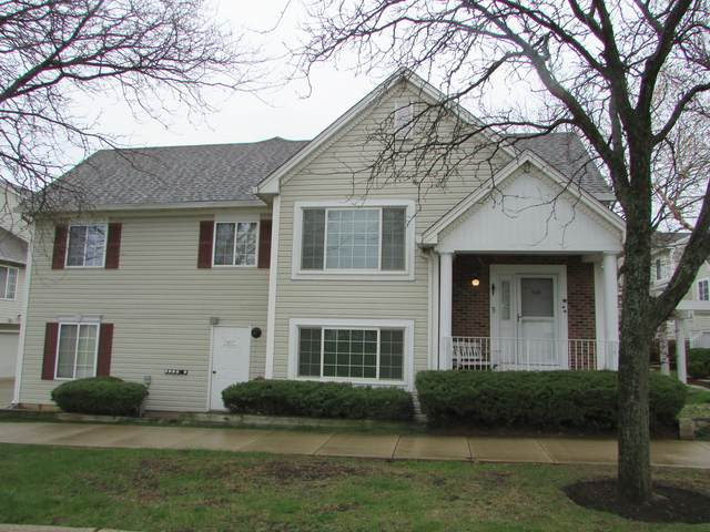 320 Emerald Court Na, Bolingbrook, IL 60440 (MLS #11059181) :: Helen Oliveri Real Estate