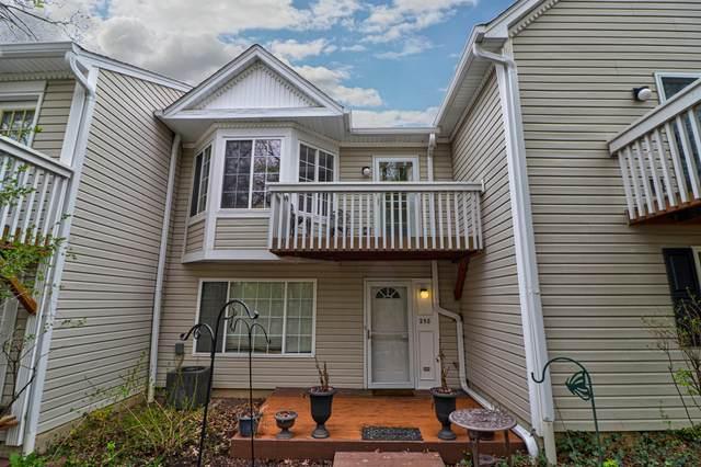 258 W Whispering Oaks Lane #258, Round Lake, IL 60073 (MLS #11059194) :: RE/MAX IMPACT