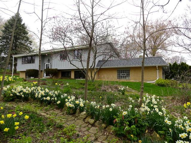 3N208 Pine Hills Road, St. Charles, IL 60175 (MLS #11059252) :: Helen Oliveri Real Estate