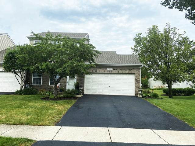 7203 Manchester Drive, Plainfield, IL 60586 (MLS #11059285) :: Suburban Life Realty