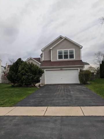 221 Wildflower Lane, Round Lake Beach, IL 60073 (MLS #11059375) :: Helen Oliveri Real Estate