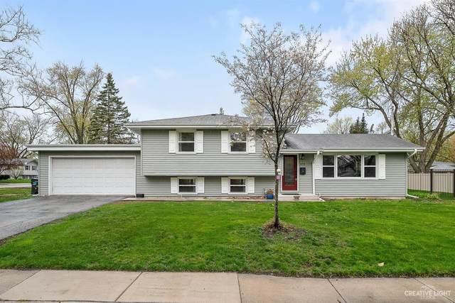 859 Magnolia Lane, Naperville, IL 60540 (MLS #11059846) :: Helen Oliveri Real Estate
