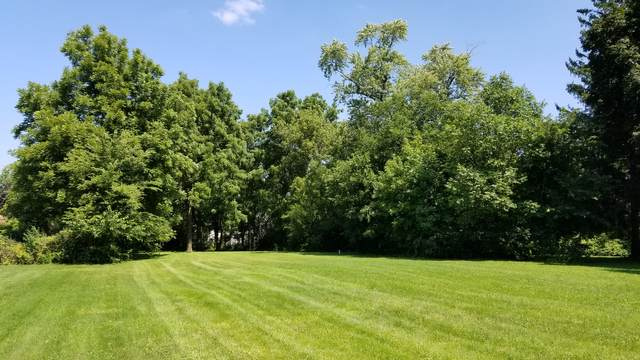 302 E Camp Mcdonald Road, Prospect Heights, IL 60070 (MLS #11059852) :: O'Neil Property Group