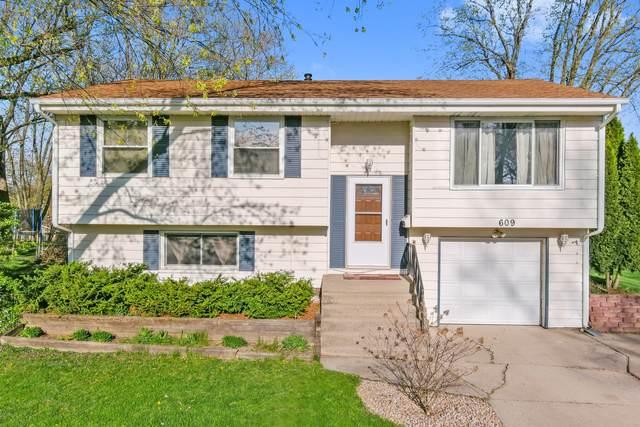 609 Auburn Lane, Schaumburg, IL 60193 (MLS #11059864) :: Ryan Dallas Real Estate