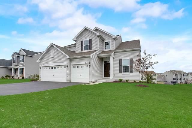238 Telluride Lane, Volo, IL 60020 (MLS #11059898) :: Helen Oliveri Real Estate