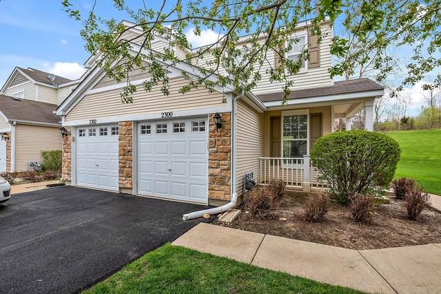 2300 Flagstone Lane, Carpentersville, IL 60110 (MLS #11059902) :: Helen Oliveri Real Estate