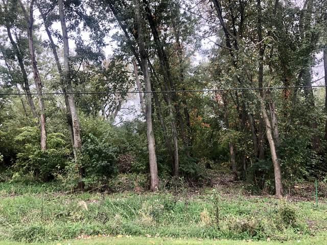 715 W Bergera Road, Braidwood, IL 60408 (MLS #11060013) :: Carolyn and Hillary Homes
