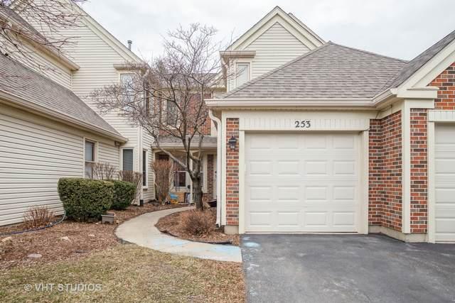 253 University Lane #3, Elk Grove Village, IL 60007 (MLS #11060279) :: Ryan Dallas Real Estate