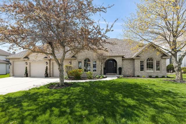 1585 Winberie Court, Naperville, IL 60564 (MLS #11060295) :: Ryan Dallas Real Estate