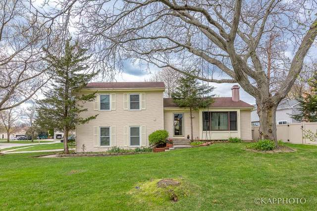 1501 Bunescu Lane, Buffalo Grove, IL 60089 (MLS #11060394) :: RE/MAX IMPACT