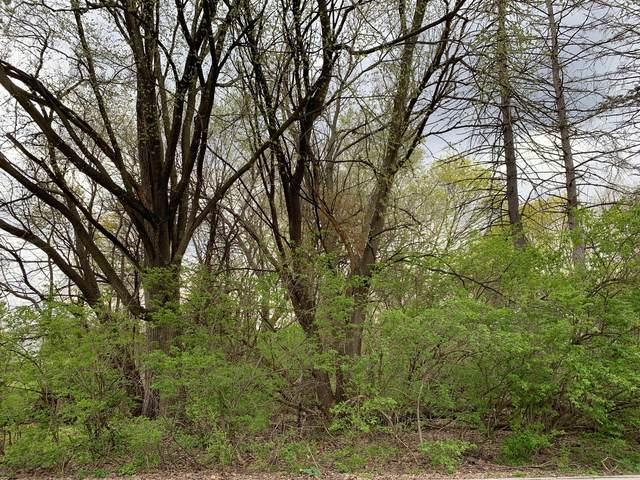 Lot 45 B Mckinley Street, Batavia, IL 60510 (MLS #11060696) :: Ryan Dallas Real Estate