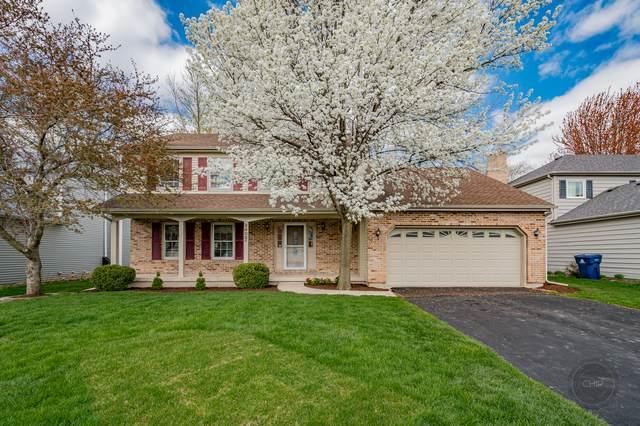 2405 Putnam Drive, Naperville, IL 60565 (MLS #11060700) :: Ryan Dallas Real Estate