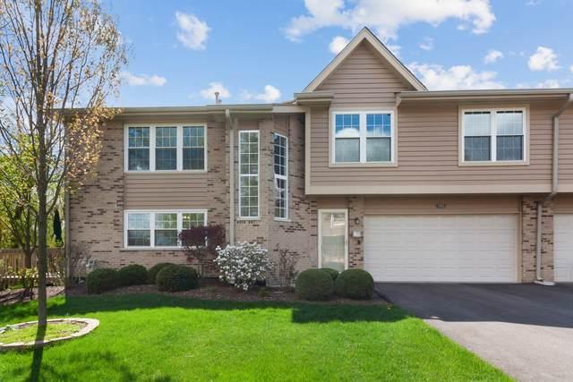 7955 Stewart Drive, Darien, IL 60561 (MLS #11060703) :: Ryan Dallas Real Estate