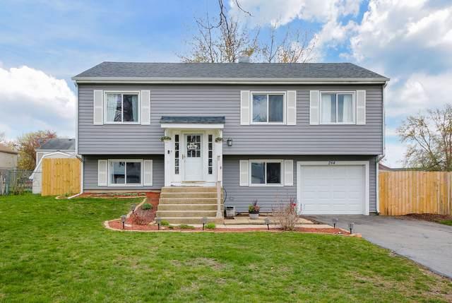 284 Porter Court, Bartlett, IL 60103 (MLS #11060714) :: Ryan Dallas Real Estate