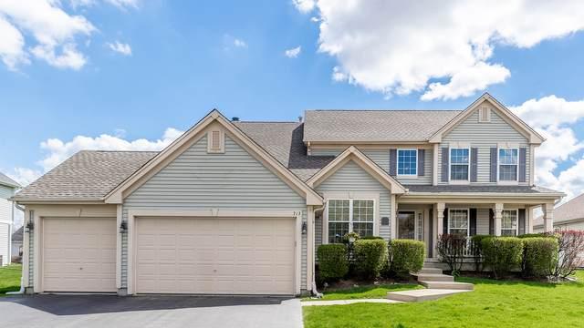 713 Brighton Circle, Port Barrington, IL 60010 (MLS #11060850) :: Helen Oliveri Real Estate
