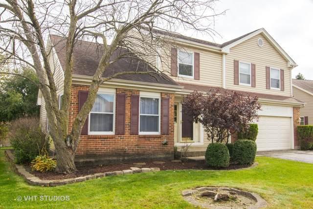 1015 Pear Tree Lane, Wheeling, IL 60090 (MLS #11061110) :: Helen Oliveri Real Estate