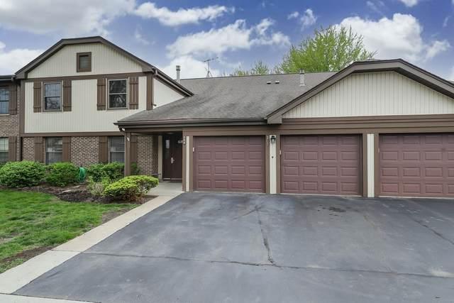 369 Southbury Court D2, Schaumburg, IL 60193 (MLS #11061297) :: BN Homes Group