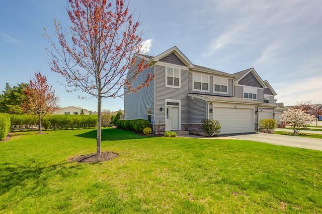 1011 Green Meadow Avenue, Vernon Hills, IL 60061 (MLS #11061331) :: The Dena Furlow Team - Keller Williams Realty