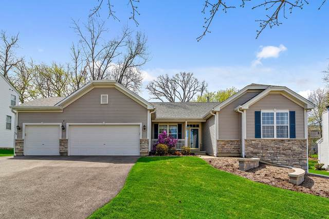 485 Elm Ridge Court, Carpentersville, IL 60110 (MLS #11061717) :: Helen Oliveri Real Estate