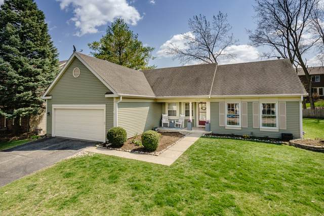 969 Manchester Street, Cary, IL 60013 (MLS #11061863) :: Lewke Partners