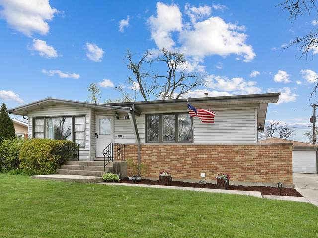 171 Terrace Drive, Chicago Heights, IL 60411 (MLS #11061910) :: Helen Oliveri Real Estate