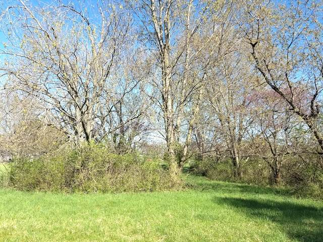 Lot 584 Cardinal Drive, Varna, IL 61375 (MLS #11061928) :: Jacqui Miller Homes