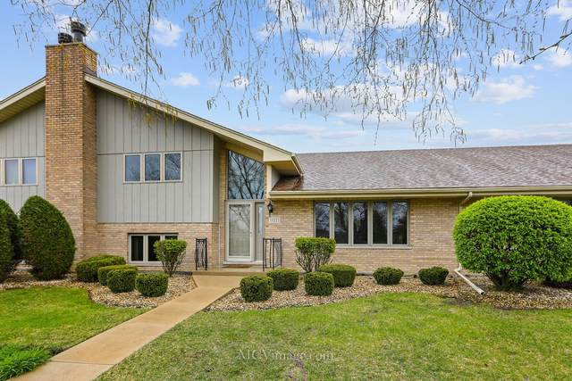 11021 New York Court, Orland Park, IL 60467 (MLS #11061939) :: Littlefield Group