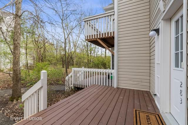 283 W Treehouse Lane, Round Lake, IL 60073 (MLS #11061999) :: RE/MAX IMPACT