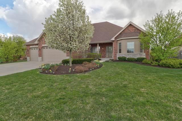 12425 Teluride Lane, Mokena, IL 60448 (MLS #11062022) :: Helen Oliveri Real Estate
