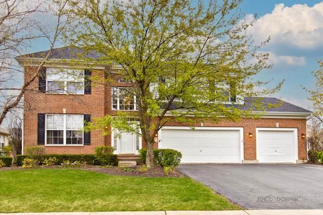1227 Maidstone Drive, Vernon Hills, IL 60061 (MLS #11062054) :: Helen Oliveri Real Estate