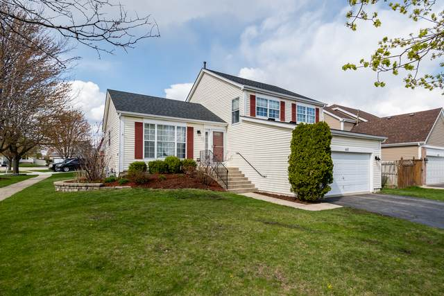 445 Wildflower Way, Bolingbrook, IL 60440 (MLS #11062272) :: The Perotti Group