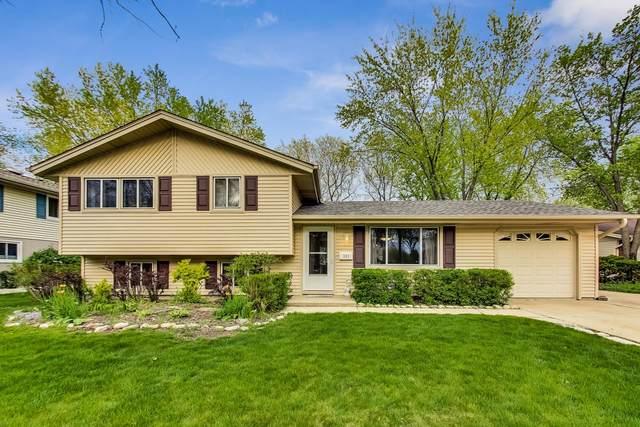 301 Andrew Lane, Schaumburg, IL 60193 (MLS #11062296) :: Helen Oliveri Real Estate