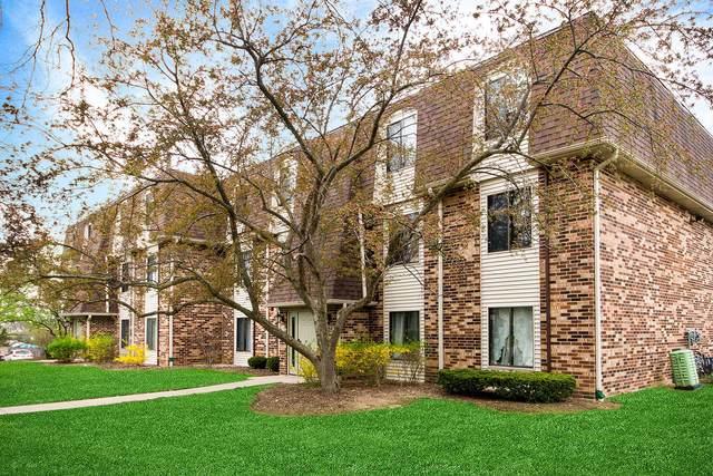 264 W Court Of Shorewood Court 3B, Vernon Hills, IL 60061 (MLS #11062399) :: Littlefield Group
