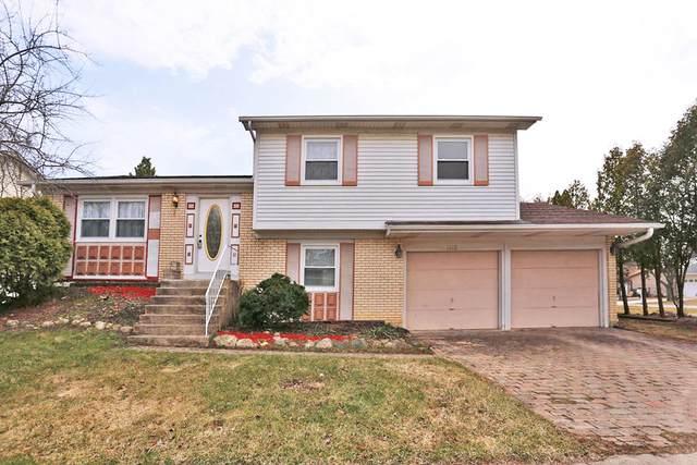 1689 Dover Court, Hoffman Estates, IL 60192 (MLS #11062407) :: Helen Oliveri Real Estate
