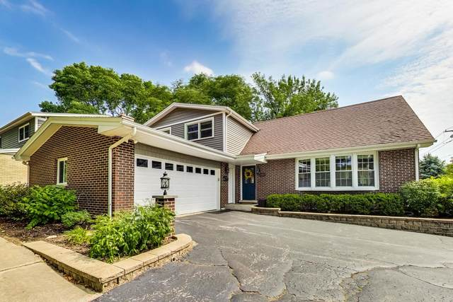 1303 N Pine Avenue, Arlington Heights, IL 60004 (MLS #11062492) :: RE/MAX IMPACT