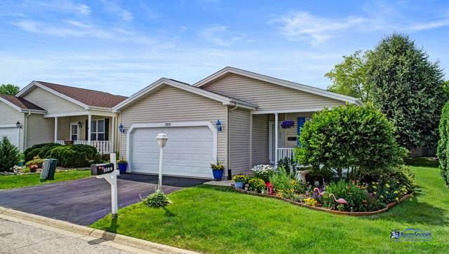3109 Appaloosa Way, Grayslake, IL 60030 (MLS #11062763) :: O'Neil Property Group