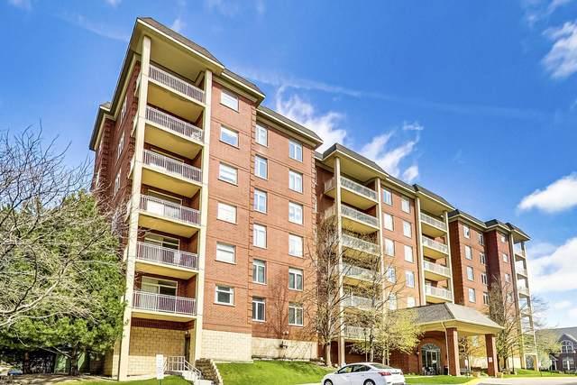 8400 Callie Avenue #214, Morton Grove, IL 60053 (MLS #11062925) :: Littlefield Group