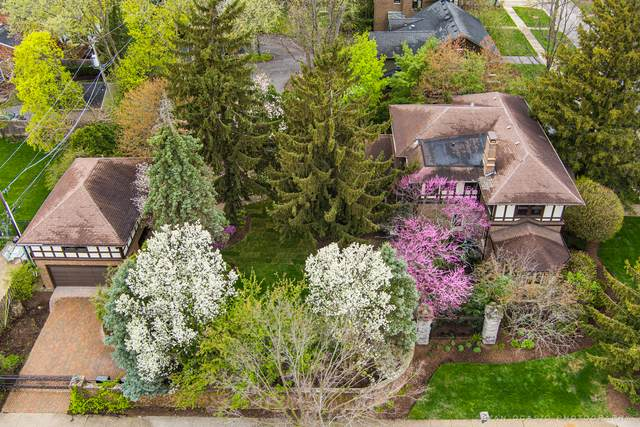 106 Elmwood Terrace, Elmhurst, IL 60126 (MLS #11063053) :: RE/MAX IMPACT
