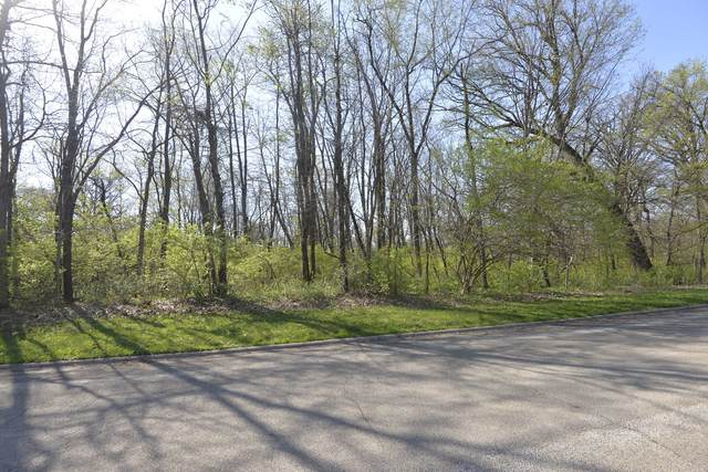 14443 Wallingford Trail, Manhattan, IL 60442 (MLS #11063185) :: Carolyn and Hillary Homes