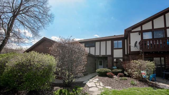 434 Brandy Drive A, Crystal Lake, IL 60014 (MLS #11063317) :: Lewke Partners