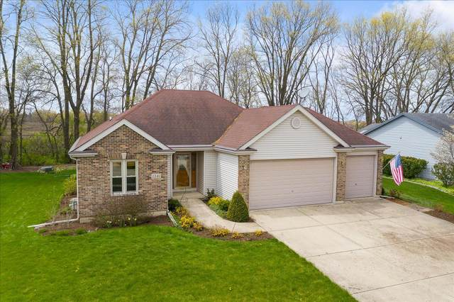 1341 Coral Berry Court, Yorkville, IL 60560 (MLS #11063458) :: Littlefield Group