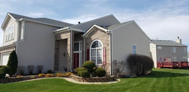 442 Brassie Lane, University Park, IL 60484 (MLS #11063883) :: Helen Oliveri Real Estate