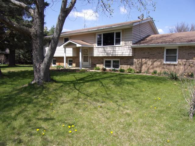 24600 W Easy Street, Plainfield, IL 60586 (MLS #11063965) :: Carolyn and Hillary Homes