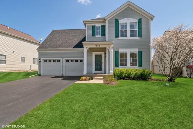 971 S Arlington Drive, Round Lake, IL 60073 (MLS #11064026) :: Helen Oliveri Real Estate