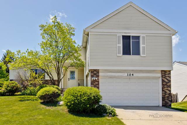 104 Lilac Lane, Buffalo Grove, IL 60089 (MLS #11064057) :: Helen Oliveri Real Estate