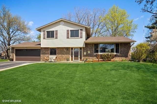 713 Utah Circle, Elk Grove Village, IL 60007 (MLS #11064103) :: BN Homes Group